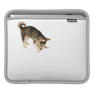 Husky Puppy 2 iPad Sleeve