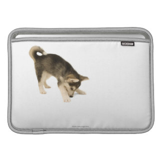 Husky Puppy 2 MacBook Sleeves