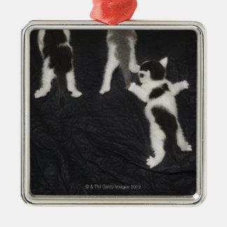 Husky Puppy Silver-Colored Square Decoration