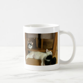 Husky pups coffee mug