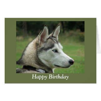 Husky Siberian dog photo happy birthday card