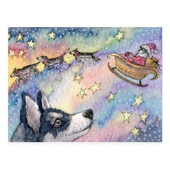 Husky Sleigh Dogs Postcard