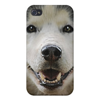 Husky Smile with Glowing Eyes Case For The iPhone 4
