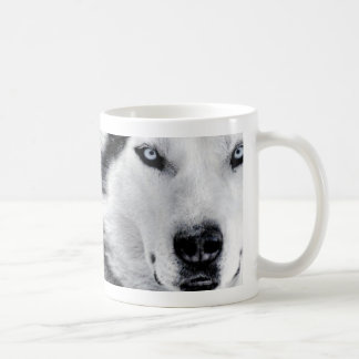 huskys coffee mug