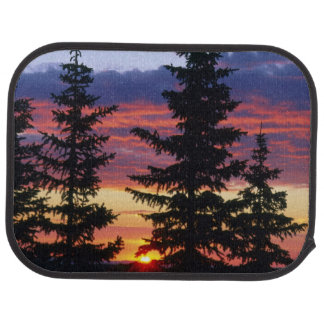 HUSTON PARK WILDERNESS, WYOMING. USA. Spruce Car Mat