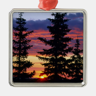 HUSTON PARK WILDERNESS, WYOMING. USA. Spruce Christmas Ornament