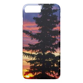 HUSTON PARK WILDERNESS, WYOMING. USA. Spruce iPhone 8 Plus/7 Plus Case
