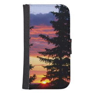 HUSTON PARK WILDERNESS, WYOMING. USA. Spruce Samsung S4 Wallet Case