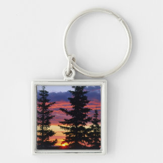 HUSTON PARK WILDERNESS, WYOMING. USA. Spruce Silver-Colored Square Key Ring