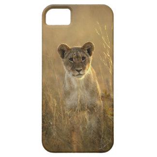 Hwange National Park, Zimbabwe. Barely There iPhone 5 Case