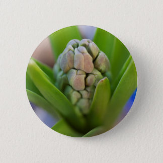 hyacinth in the garden 6 cm round badge