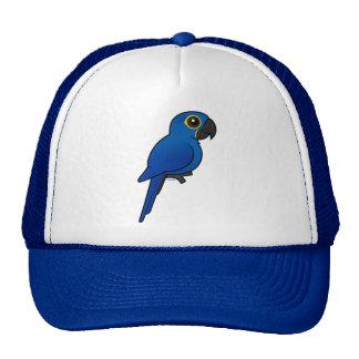 Hyacinth Macaw Hat