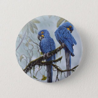 Hyacinth Macaw just for your special gifts 6 Cm Round Badge