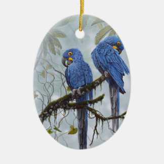Hyacinth Macaw just for your special gifts Ceramic Oval Decoration