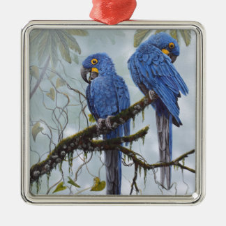 Hyacinth Macaw just for your special gifts Silver-Colored Square Decoration