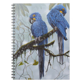 Hyacinth Macaw just for your special gifts Spiral Note Book