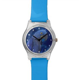 Hyacinth Macaw Wristwatches