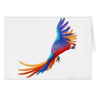 Hybrid Camelot Macaw Card