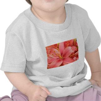 Hybrid Lilies Coordinating Items Shirts
