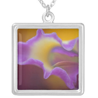 Hybrid orchid, Florida Silver Plated Necklace