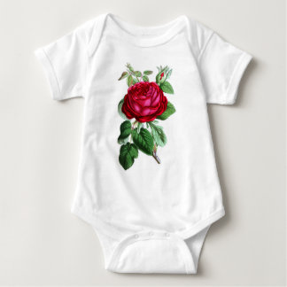 Hybrid Perpetual Rose, Lord Napier T-shirts