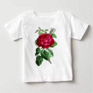 Hybrid Perpetual Rose, Lord Napier T-shirts