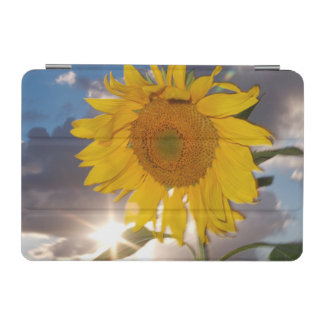 Hybrid sunflower blowing in the wind at dusk iPad mini cover