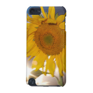 Hybrid sunflower blowing in the wind at dusk iPod touch (5th generation) cases