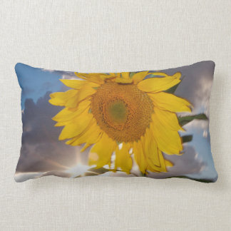 Hybrid sunflower blowing in the wind at dusk lumbar cushion