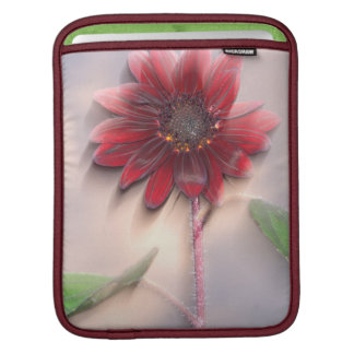 Hybrid sunflower blowing in the wind iPad sleeves