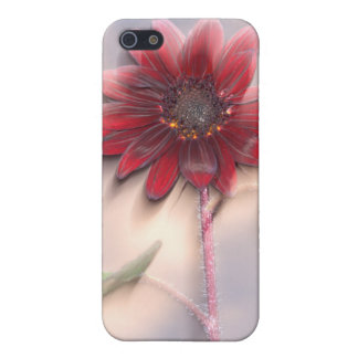 Hybrid sunflower blowing in the wind iPhone 5/5S cover