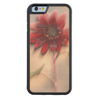 Hybrid sunflower blowing in the wind maple iPhone 6 bumper case