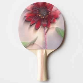 Hybrid sunflower blowing in the wind ping pong paddle