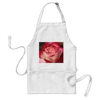 Hybrid Tea Rose Apron