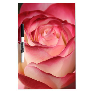 Hybrid Tea Rose Dry Erase Boards