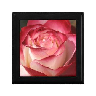 Hybrid Tea Rose Gift Box