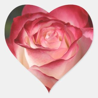 Hybrid Tea Rose Heart Sticker