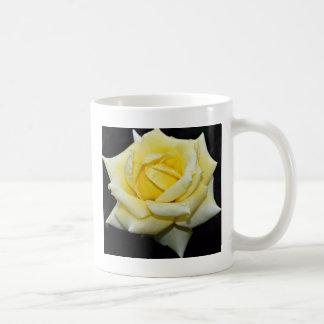 Hybrid Tea Rose 'Helmut Schmidt' White flowers Coffee Mug