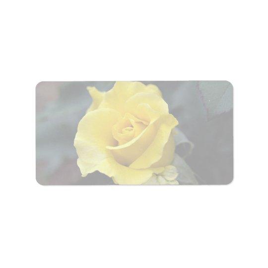 Hybrid Tea Rose 'Lanvin' Roses Address Label