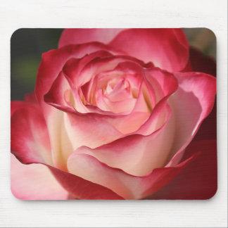 Hybrid Tea Rose Mouse Pad
