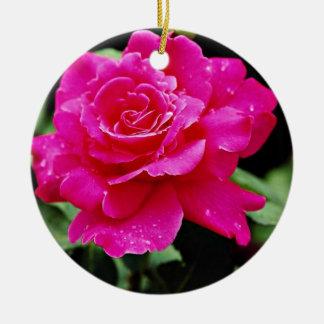 Hybrid Tea Rose 'Pink Peace' White flowers Christmas Ornament