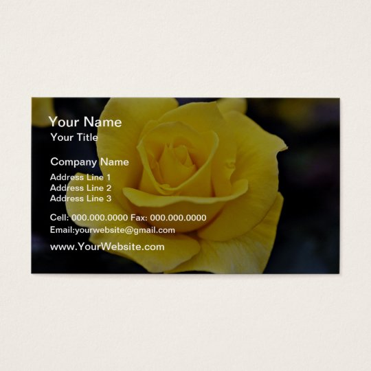 Hybrid Tea Rose White flowers Business Card