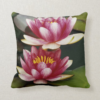 Hybrid water lilies cushion