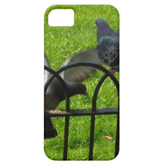 Hyde Park London iPhone 5 Cases