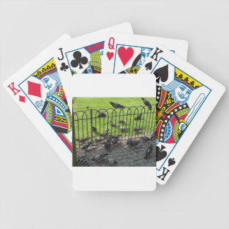 Hyde Park Pigeons Poker Deck