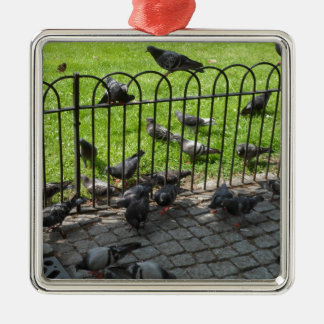 Hyde Park Pigeons Silver-Colored Square Decoration