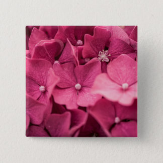 Hydrangea 15 Cm Square Badge