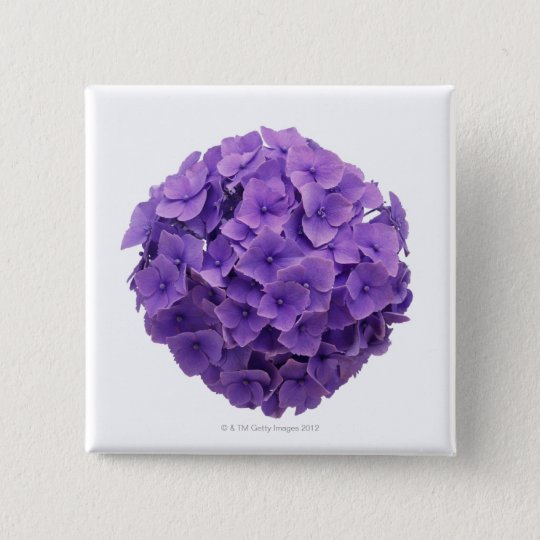Hydrangea Ball Close-up 15 Cm Square Badge