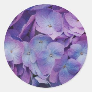 Hydrangea Blooms Classic Round Sticker
