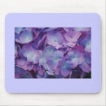 Hydrangea Blooms Mousemats